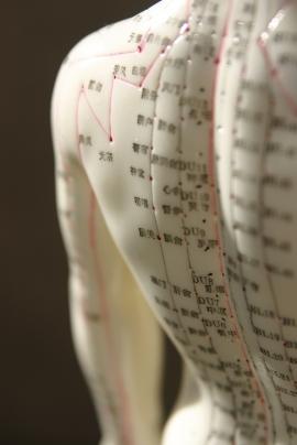 Akupunktur, Meridiane, integrative Medizin, ganzheitlich, ganzheitliche Medizin, komplementär, natürlich, integrative Medizin, Gesundheit, Energiebahnen, Lo-Gefäß, Moxibustion, Akupressur, Laser, TCM