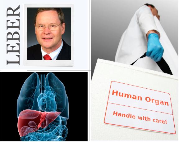 Leber, Transplantation, Medizin, integrative Medizin, künstliche Leber, Peter Neuhaus, Johann Pratschke, Charite, Chirurgie