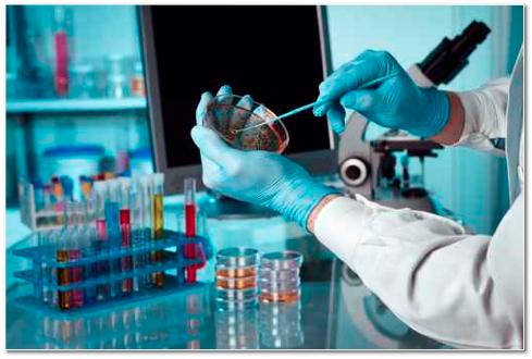 Darmspiegelung, Darmkrebs, Koloskopie, Prof. Dr. Friedrich Hagenmüller, Asklepios, Altona,, integrativ, komplemantär, ganzheitlich, Medizin für Menschen, Reichelt