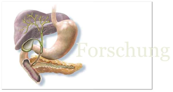 Galle, Gallenblase, Entfernung, Lararoskop, Prof. Dr. Wolfgang Schwenk, Altona, Operation, minimal-invasiv