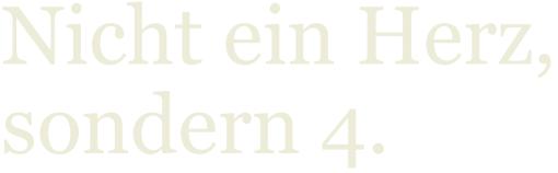 LNB, Liebscher-Bracht, Schmerztherapie, Faszien, Muskeln, Petra Bracht, Roland Liebscher-Brachtt. Reichelt, Medizin für Menschen, Knie, Hüfte, Rücken, 4 Herzen, LNB-Motion